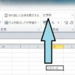 Excelの入力データを打ったそのままで表示させるには