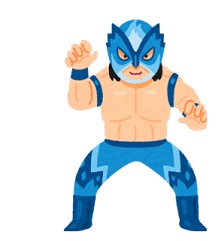 sports_pro_wrestler_mask-232x300