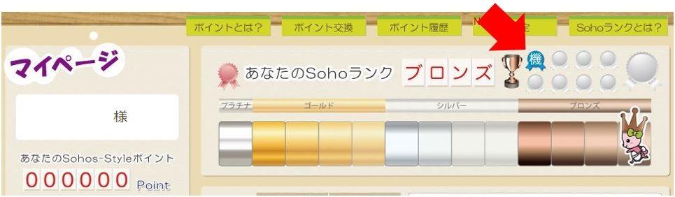 SOHO機密情報