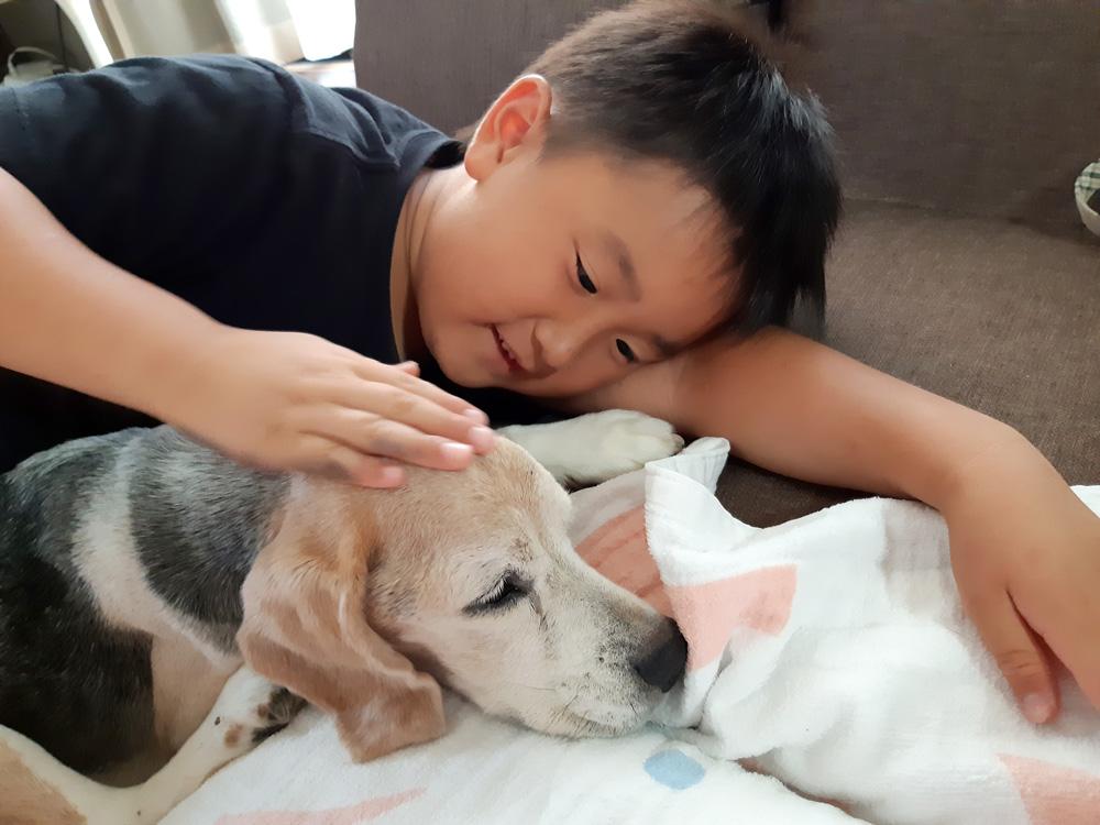 愛犬と一緒